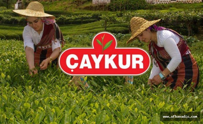 Çaykur'dan üreticileri memnun edecek kota açıklaması