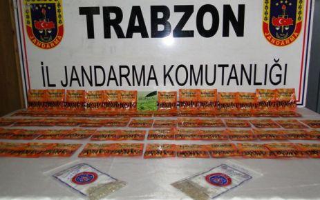 Of Jandarma 500 paket Bonzai yakaladı