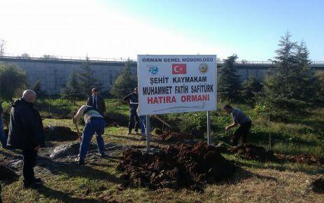 Şehit Kaymakam Safitürk'ün adına Of'ta Hatıra Ormanı