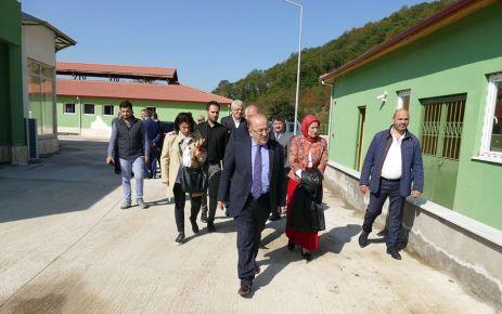 Türkiye'nin en büyük hayvan bakım merkezi hizmete giriyor
