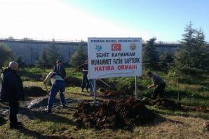 Şehit Kaymakam Safitürk'ün adına Of'ta Hatıra Orma