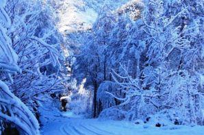 2012'nin ilk karından manzaralar