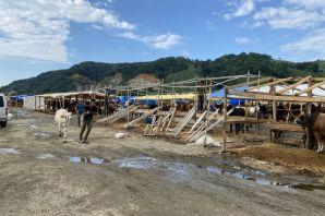 Kaymakam İnan halk pazarı ve kurban pazarını ziyaret etti