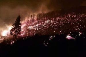 Trabzon'da 10 ilçede birden yangın