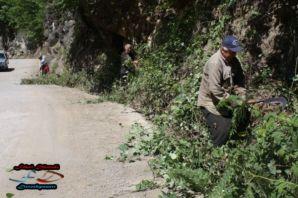 Dernekpazarı Yenice  Köyü  Muhtarından örnek bir ç