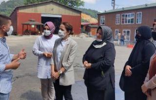 AK Kadınlar ilçe ve mahalle ziyaretlerini sürdürüyor