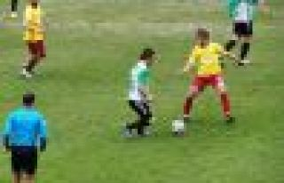 Ofspor Tepecikspor'a mağlup oldu