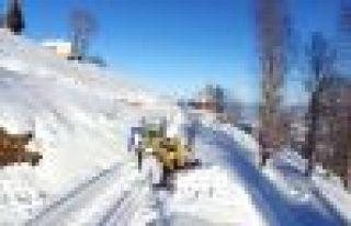 Trabzon'da bu gece kar yağışı bekleniyor