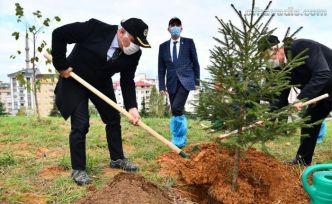 Trabzon'da 40 bin fidan dikildi