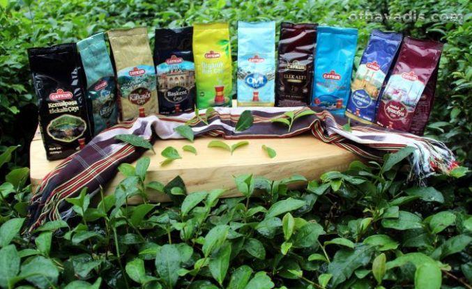 Çaykur bölgelere özel çay üretti, peki Of neden yok?