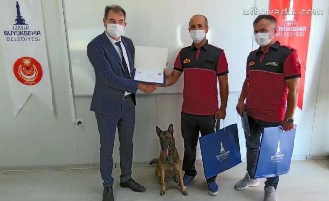 Büyükşehir'in arama köpekleri hayat kurtaracak