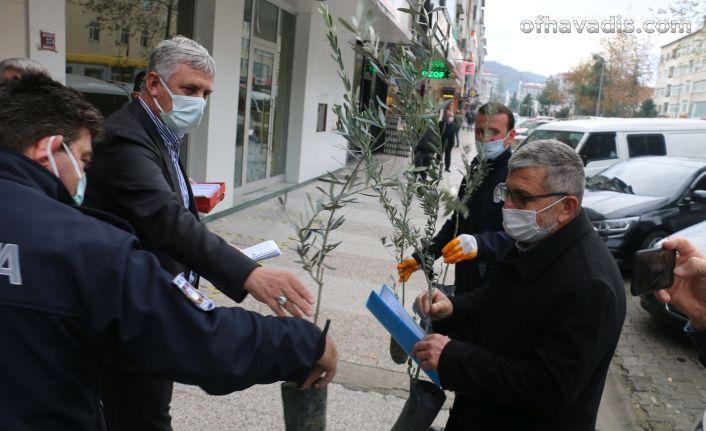 Başkan ve Kaymakamdan vatandaşlara 15 bin zeytin ağacı fidanı