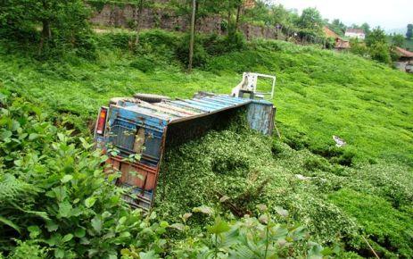 Of'ta Çay yüklü kamyon devrildi; 1 ölü