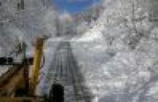 Büyükşehir Belediyesinin karla mücadelesi başladı