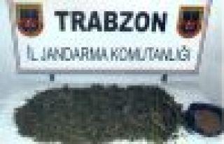 Of Jandarma'dan kaçak sigara ve kenevir operasyonu