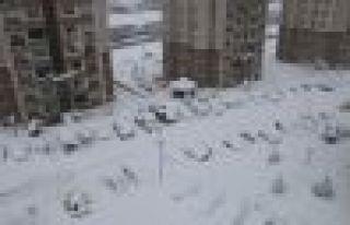 Of Merkezde kar 60 santimetreyi aştı